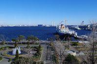 横浜グリーン行政書士事務所のブログをはじめました。